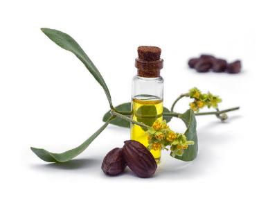 Wild Hair Growth Oil Reviews